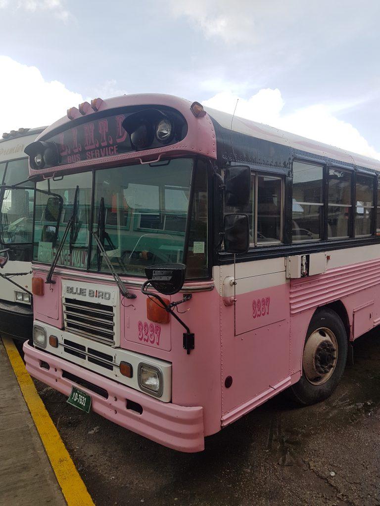Belize en famille bus e1572054090523 768x1024 Le paradis a un nom : Caye Caulker