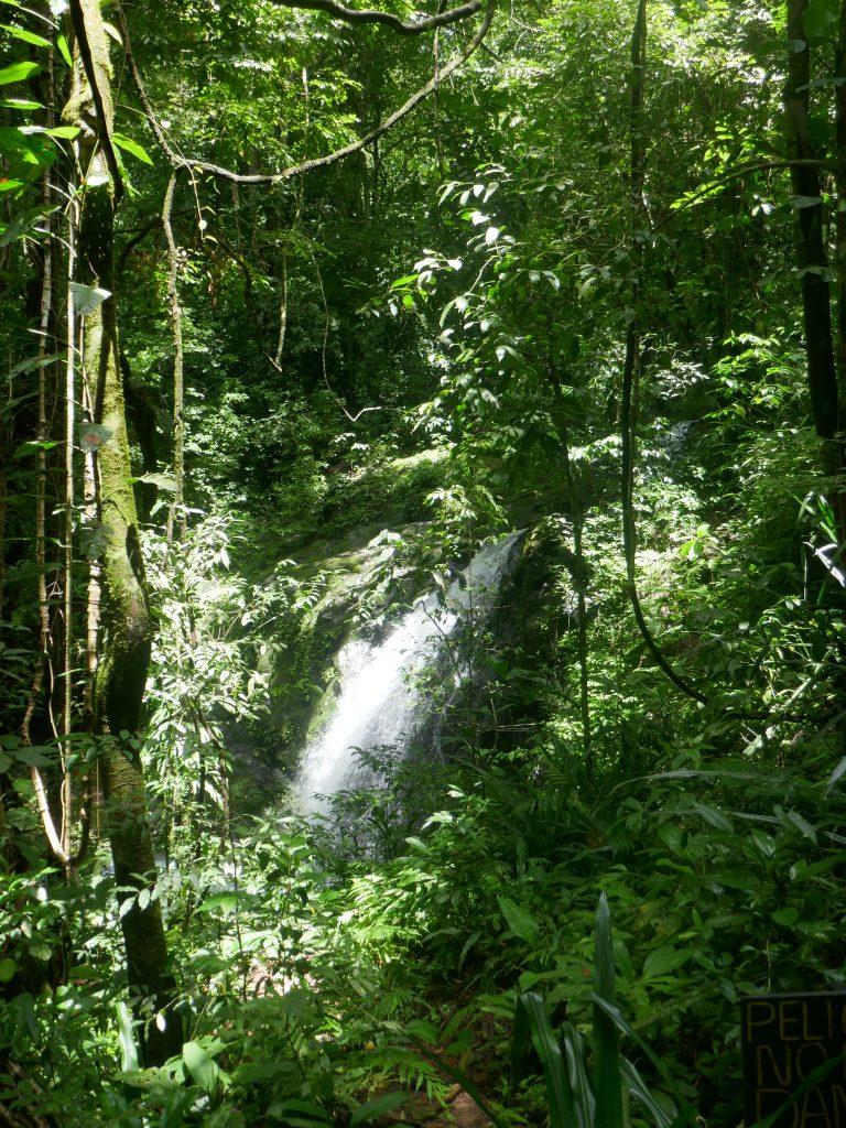cascade parc manuel antonio e1570071600980 768x1024 Costa Rica : A la découverte des animaux sauvages