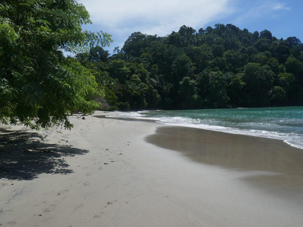 plage parc manuel antonio 1024x768 Costa Rica : A la découverte des animaux sauvages