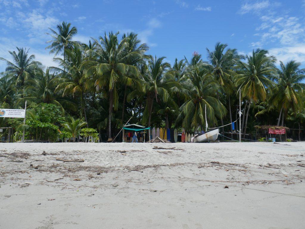 plage samara 1024x768 Costa Rica : A la découverte des animaux sauvages