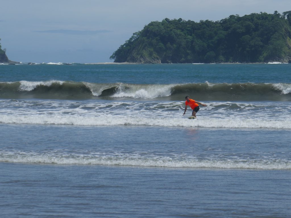 surf samara 1024x768 Costa Rica : A la découverte des animaux sauvages