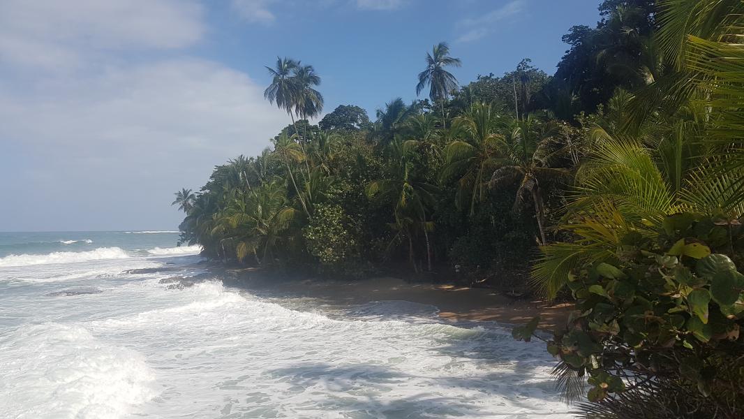 Puerto Viejo Costa Rica 2 Le blog du voyage en famille