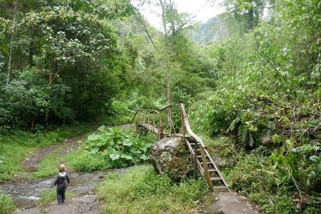 riviere boquete 1024x682 A la découverte de la jungle du Panama