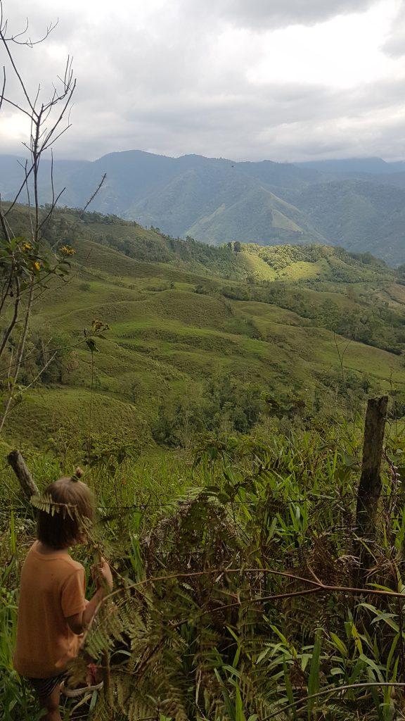 20200201 124054 576x1024 Finir en beauté dans la cordillère centrale du Costa Rica.